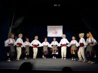 XX Регионална Домијада у културно-уметничком стваралаштву